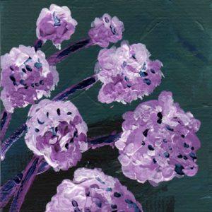 Purple Flowers?